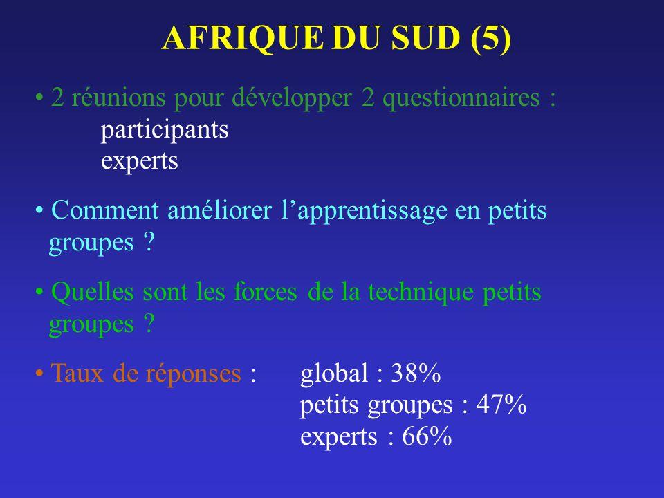 AFRIQUE DU SUD (5) 2 réunions pour développer 2 questionnaires : participants experts. Comment améliorer l'apprentissage en petits groupes
