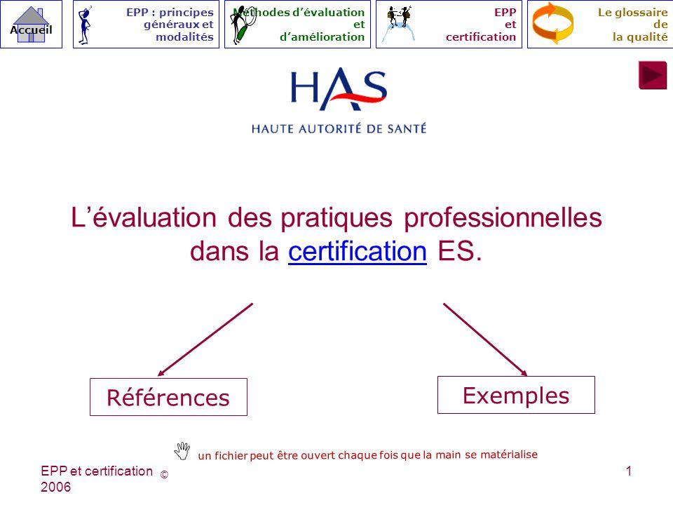 L'évaluation des pratiques professionnelles dans la certification ES.