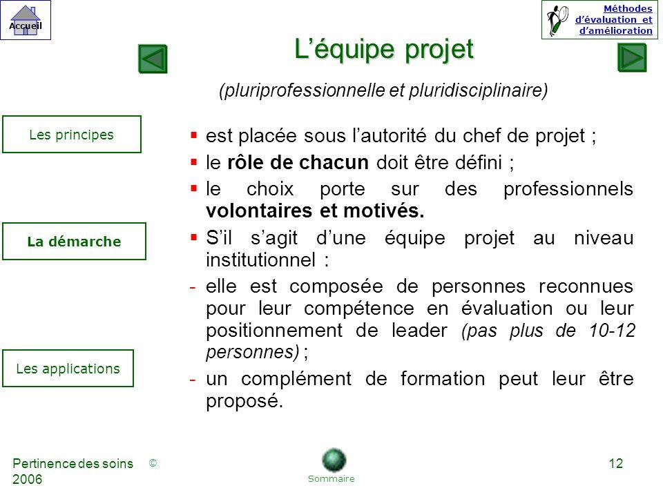 L'équipe projet est placée sous l'autorité du chef de projet ;