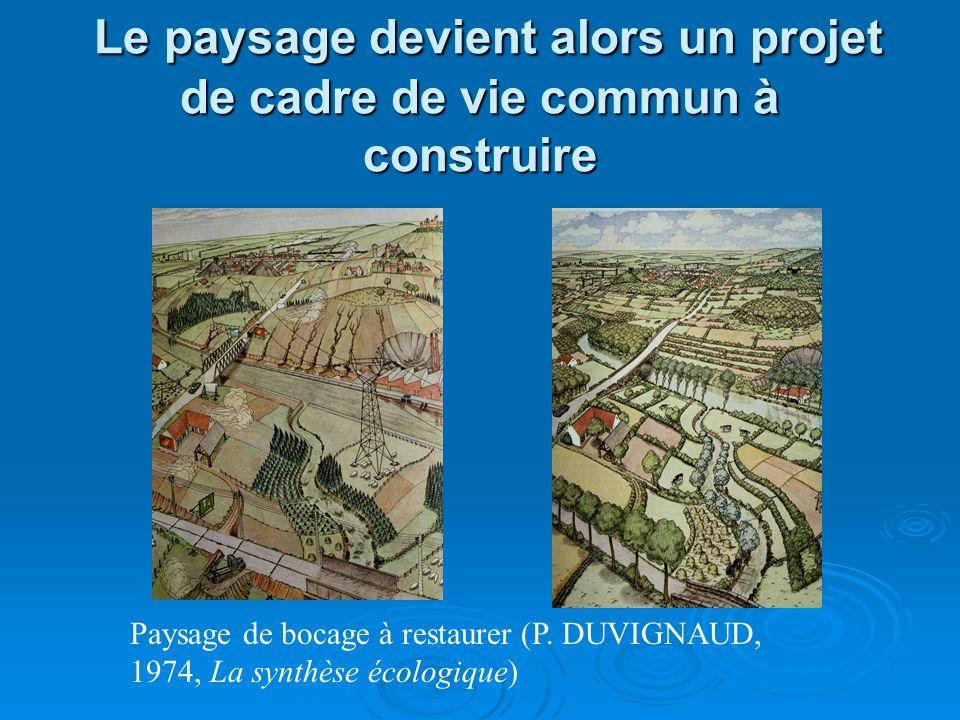 Le paysage devient alors un projet de cadre de vie commun à construire