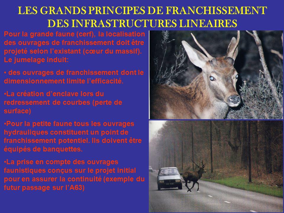 LES GRANDS PRINCIPES DE FRANCHISSEMENT DES INFRASTRUCTURES LINEAIRES