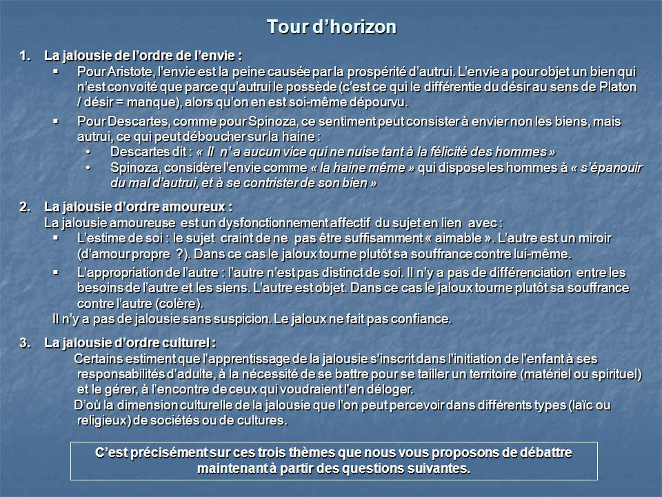 Tour d'horizon La jalousie de l'ordre de l'envie :