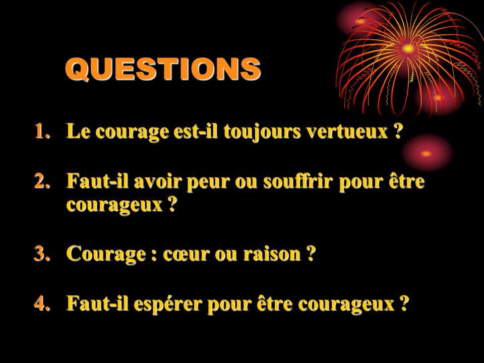 QUESTIONS Le courage est-il toujours vertueux