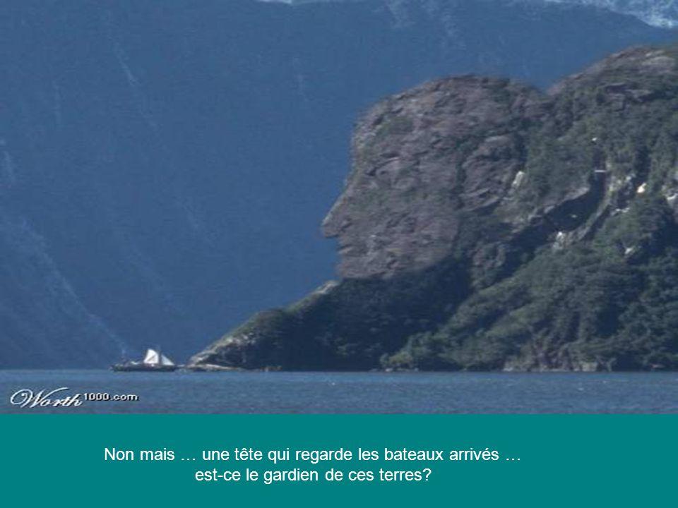 Non mais … une tête qui regarde les bateaux arrivés …