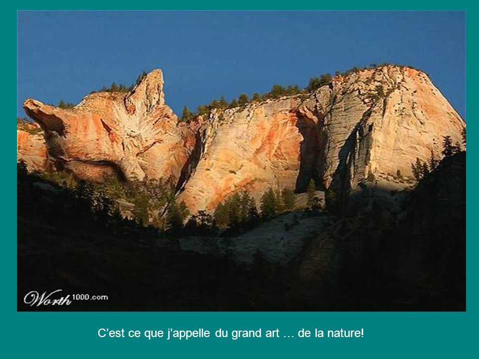 C'est ce que j'appelle du grand art … de la nature!