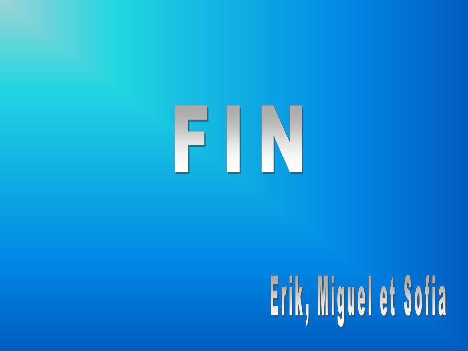 FIN Erik, Miguel et Sofia