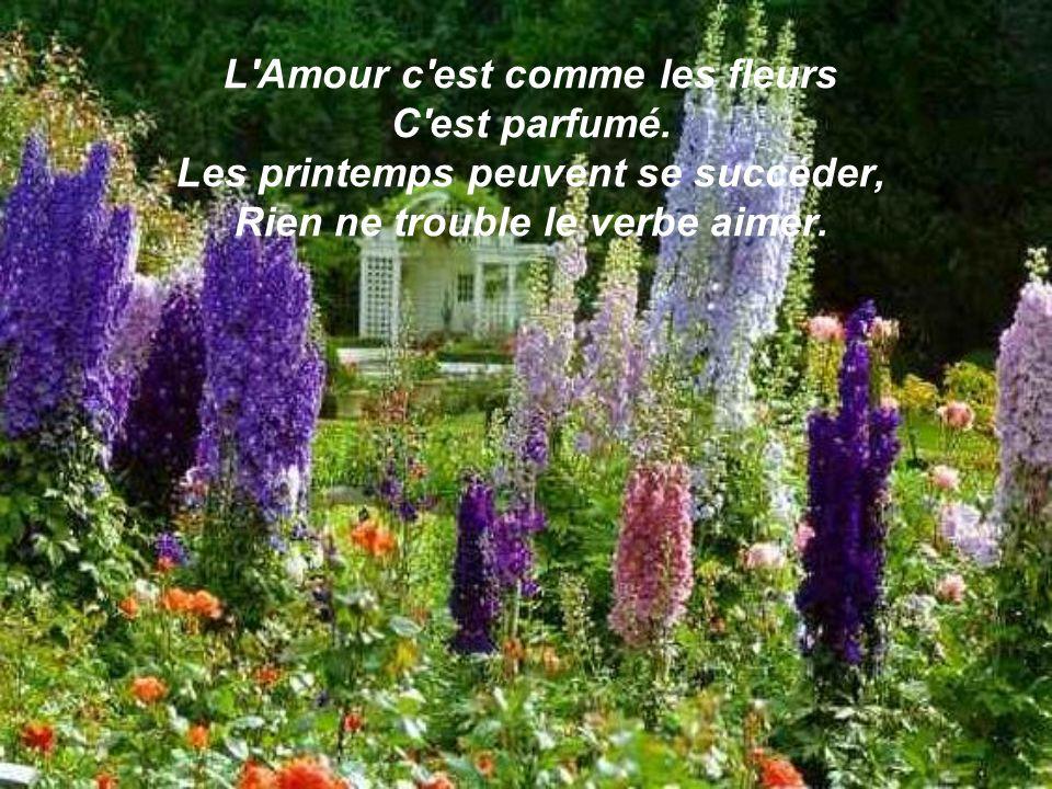 L Amour c est comme les fleurs C est parfumé