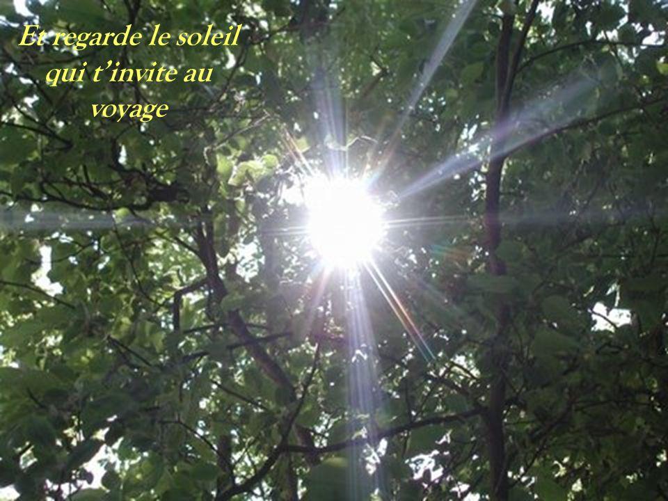 Et regarde le soleil qui t'invite au voyage