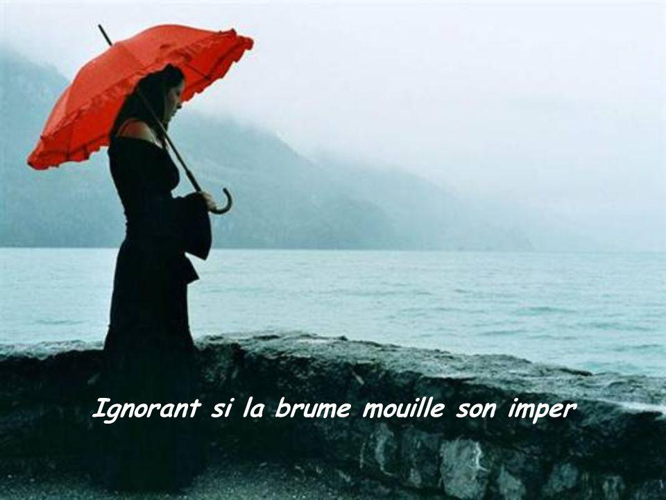 Ignorant si la brume mouille son imper