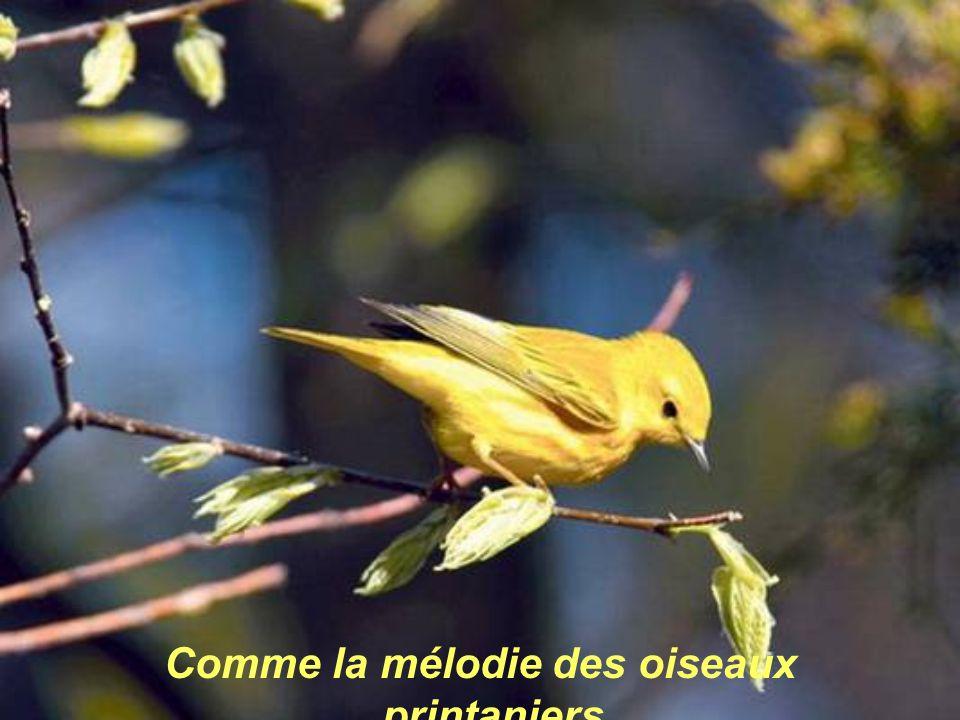 Comme la mélodie des oiseaux printaniers,