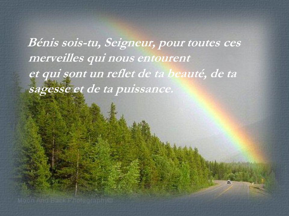 Bénis sois-tu, Seigneur, pour toutes ces merveilles qui nous entourent et qui sont un reflet de ta beauté, de ta sagesse et de ta puissance.