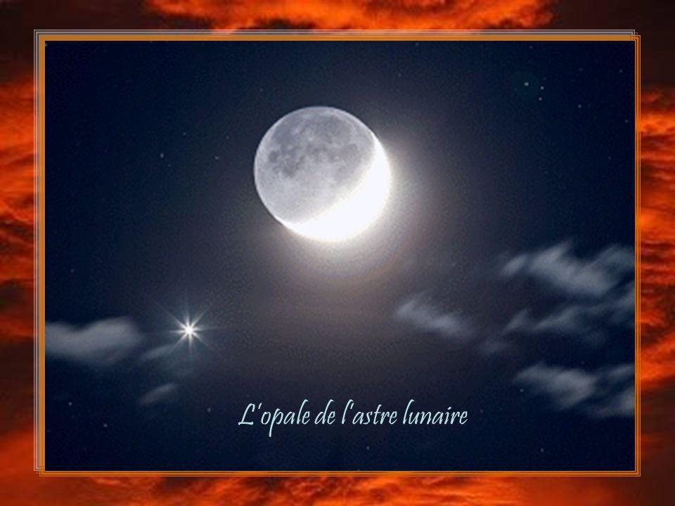 L'opale de l'astre lunaire