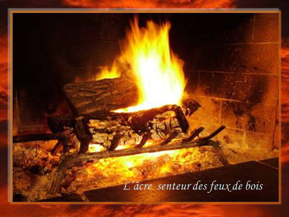 L'âcre senteur des feux de bois