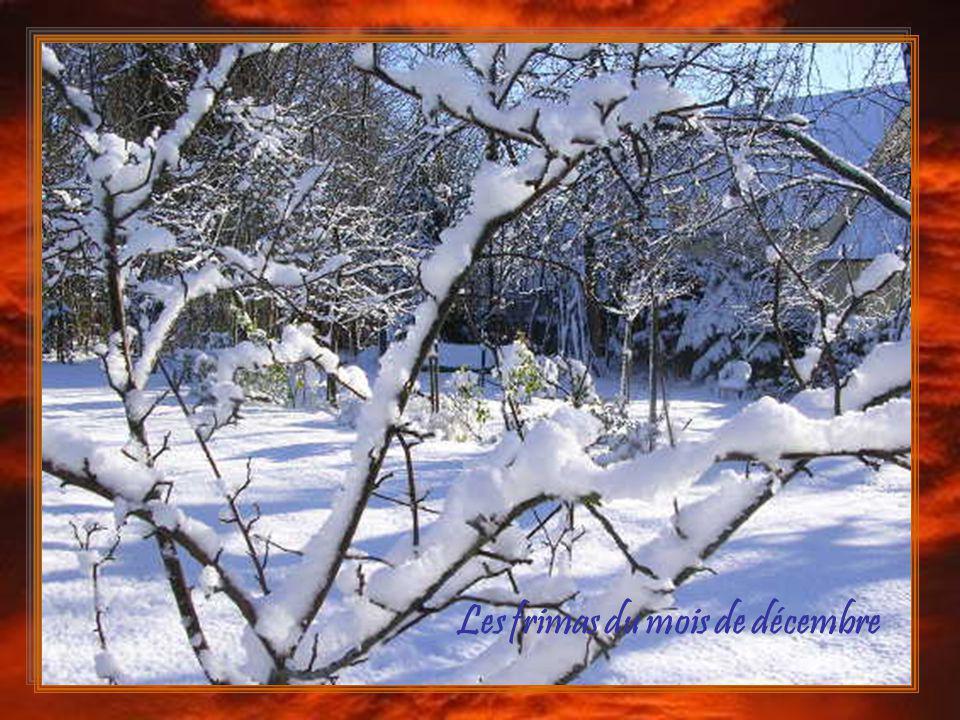 Les frimas du mois de décembre