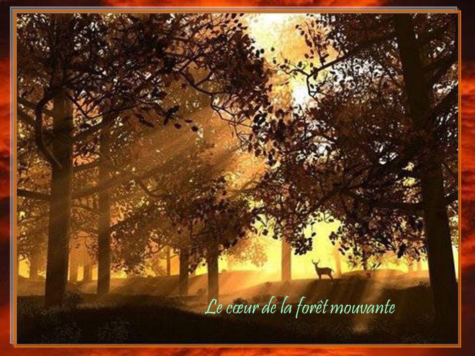 Le cœur de la forêt mouvante