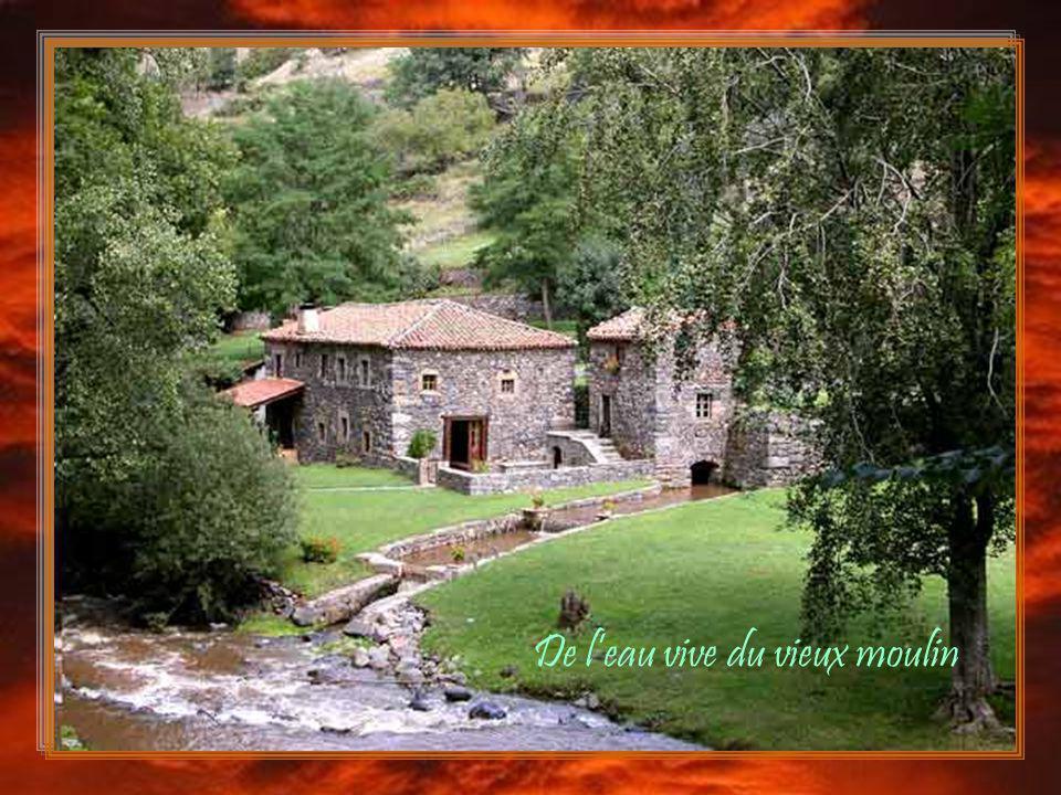 De l'eau vive du vieux moulin