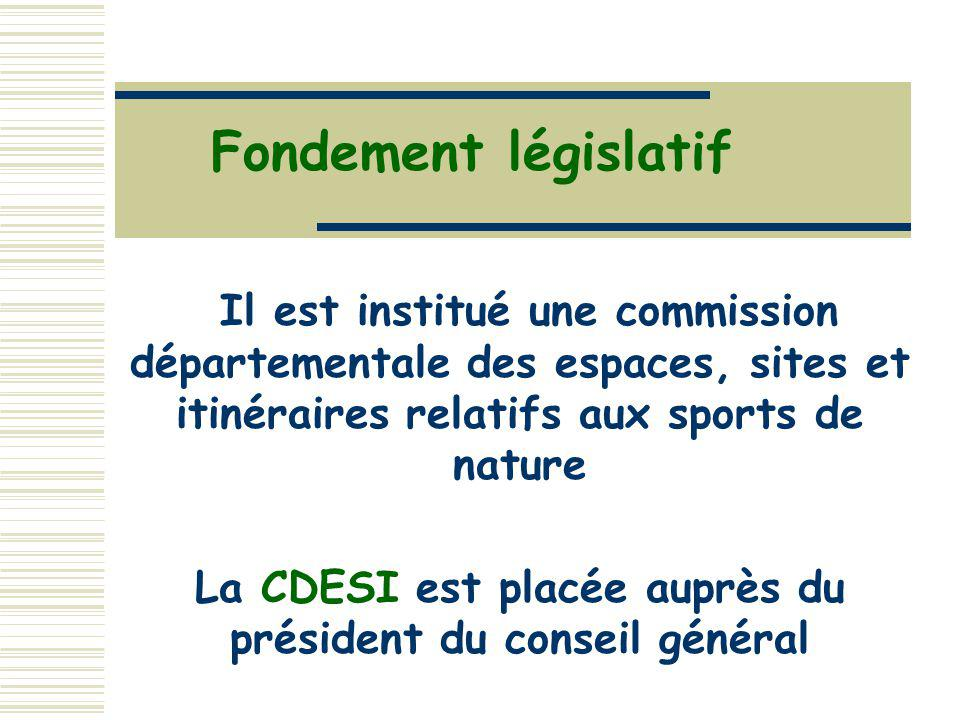 La CDESI est placée auprès du président du conseil général