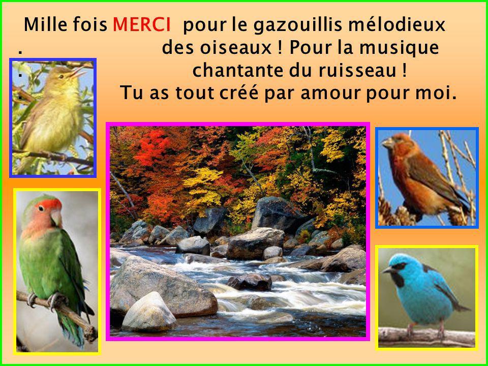 Mille fois MERCI pour le gazouillis mélodieux. des oiseaux