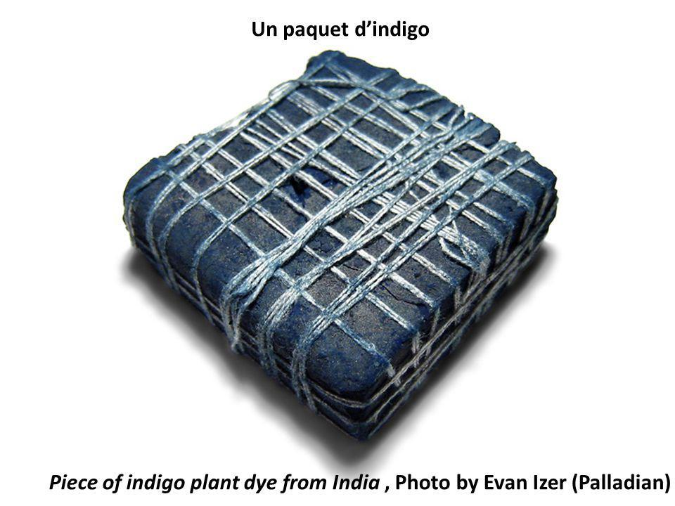 Piece of indigo plant dye from India , Photo by Evan Izer (Palladian)
