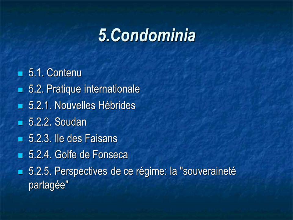 5.Condominia 5.1. Contenu 5.2. Pratique internationale