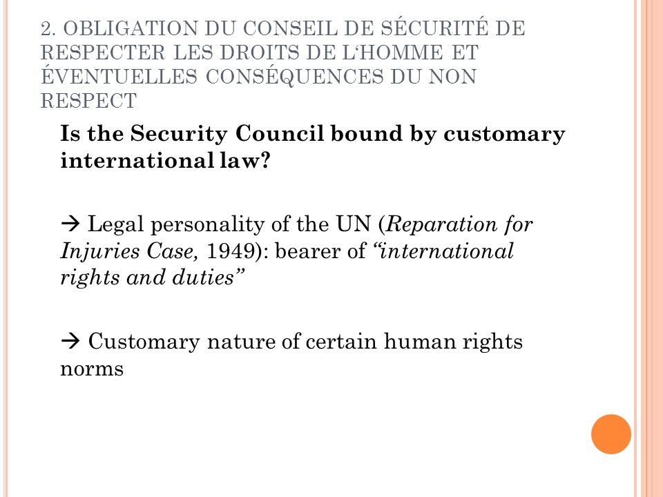 Is the Security Council bound by customary international law