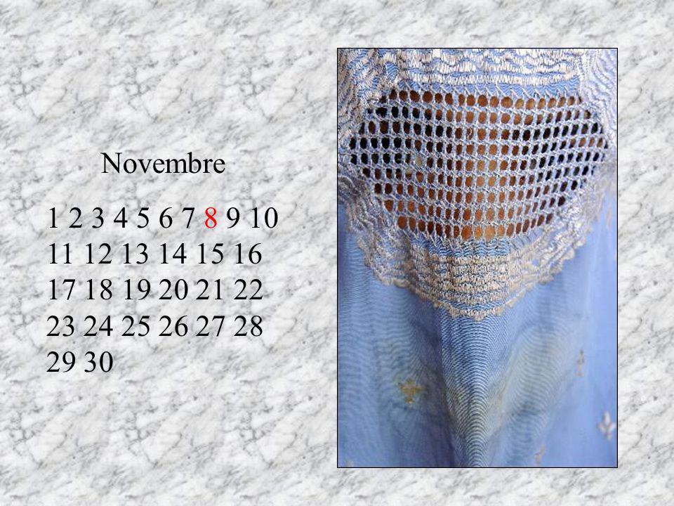 Novembre 1 2 3 4 5 6 7 8 9 10 11 12 13 14 15 16 17 18 19 20 21 22 23 24 25 26 27 28 29 30 RT 13