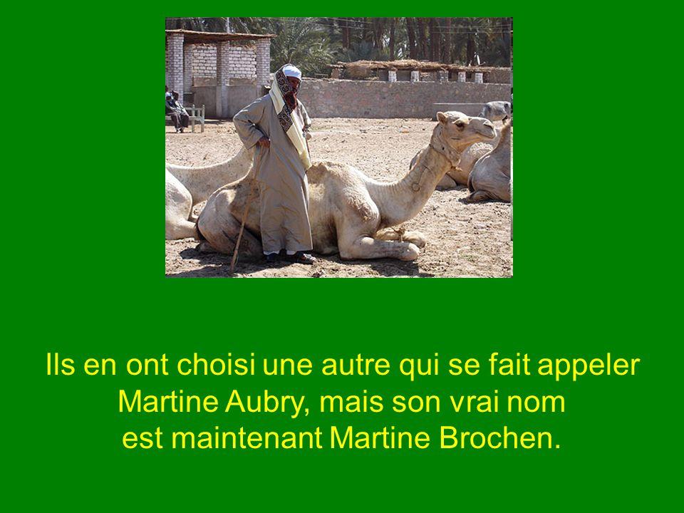 Ils en ont choisi une autre qui se fait appeler Martine Aubry, mais son vrai nom est maintenant Martine Brochen.