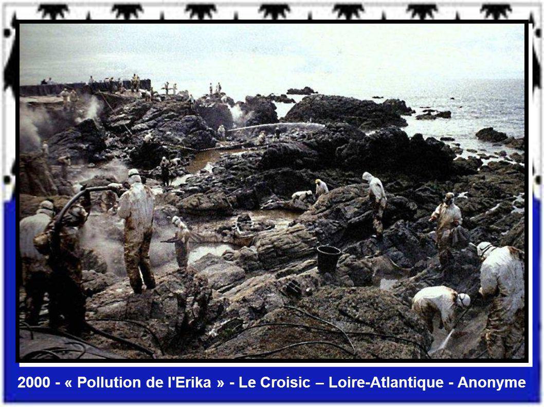 2000 - « Pollution de l Erika » - Le Croisic – Loire-Atlantique - Anonyme