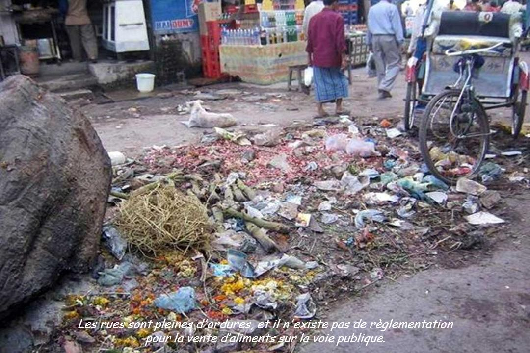 Les rues sont pleines d ordures, et il n existe pas de règlementation