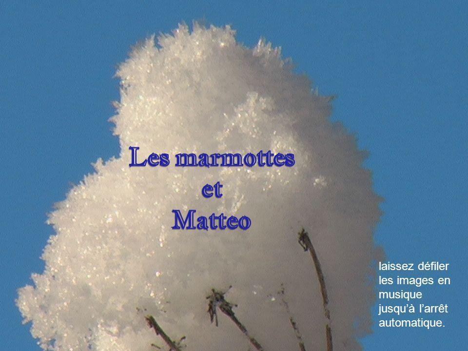 Les marmottes et Matteo
