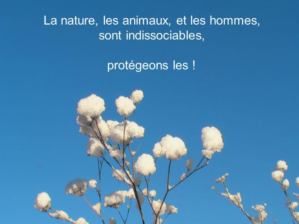 La nature, les animaux, et les hommes,