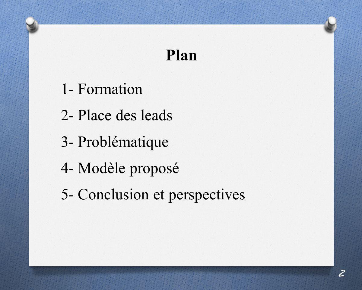 Plan 1- Formation 2- Place des leads 3- Problématique