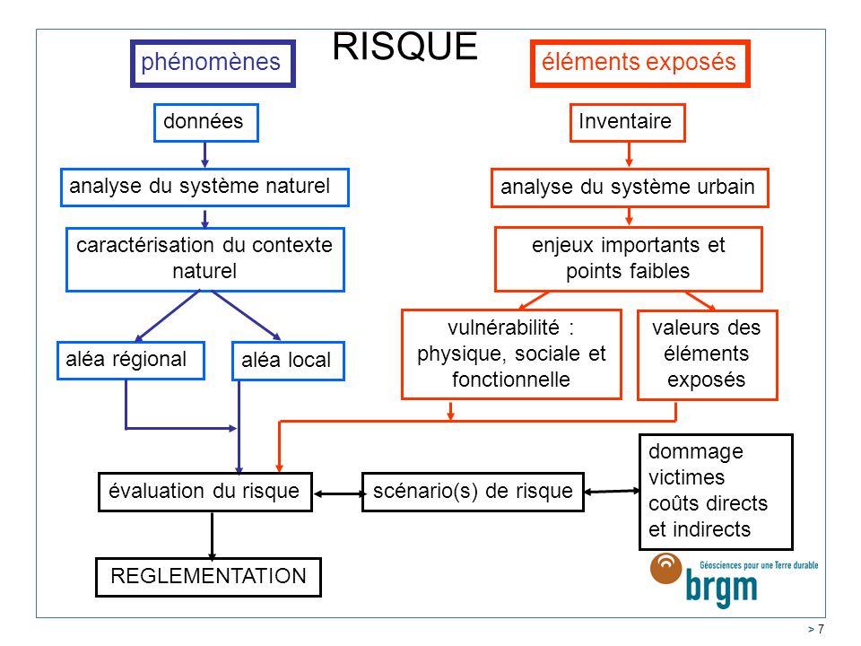 RISQUE éléments exposés phénomènes données analyse du système naturel