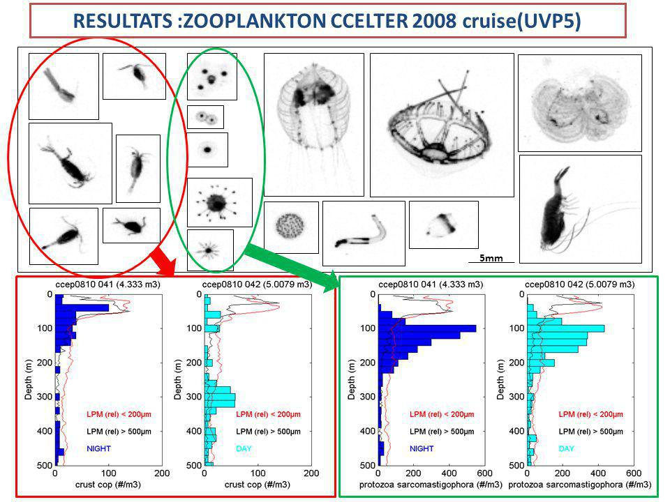 RESULTATS :ZOOPLANKTON CCELTER 2008 cruise(UVP5)