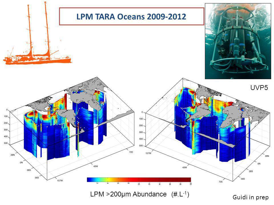 LPM TARA Oceans 2009-2012 UVP5 LPM >200μm Abundance (#.L-1)