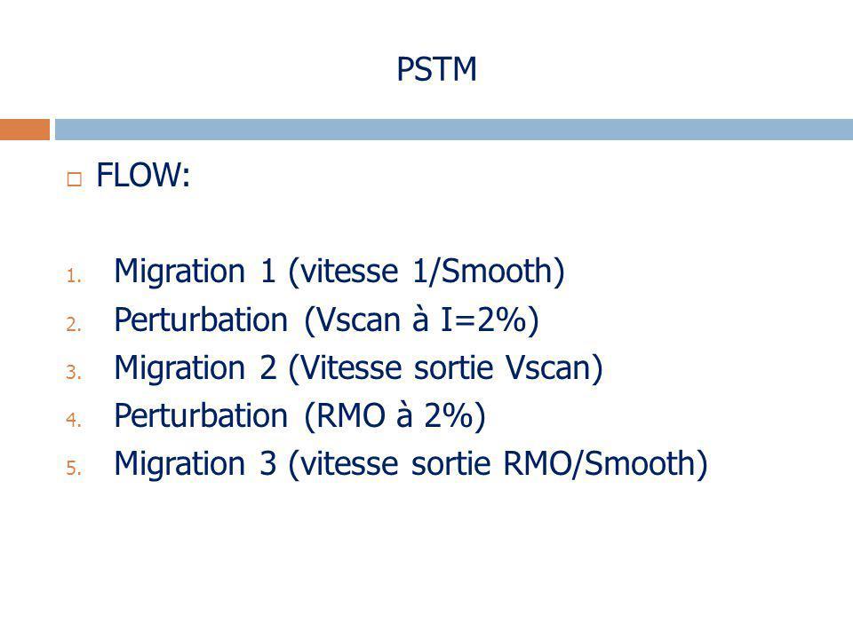 PSTM FLOW: Migration 1 (vitesse 1/Smooth) Perturbation (Vscan à I=2%) Migration 2 (Vitesse sortie Vscan)