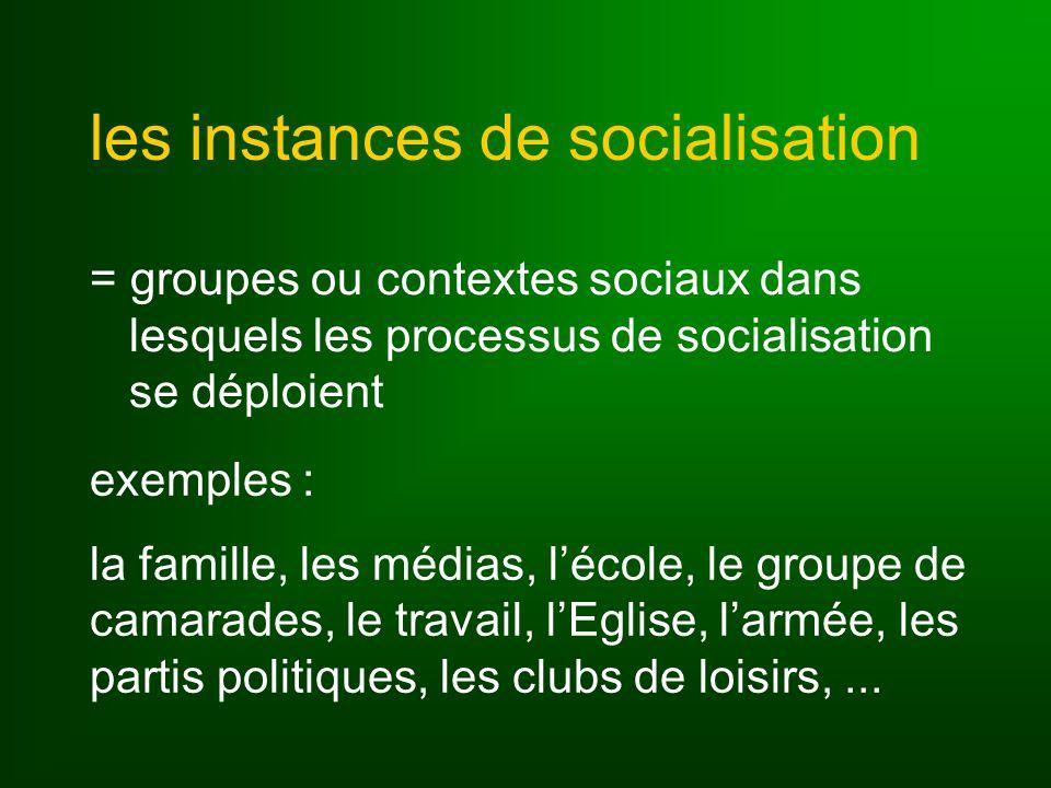 les instances de socialisation