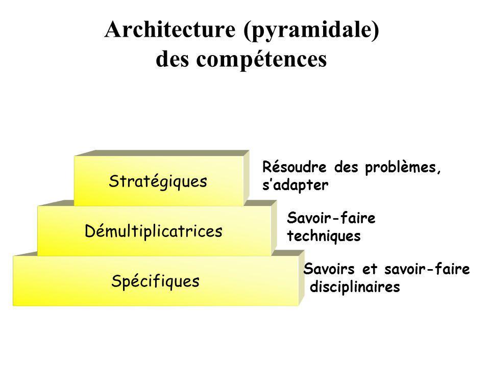 Architecture (pyramidale) des compétences