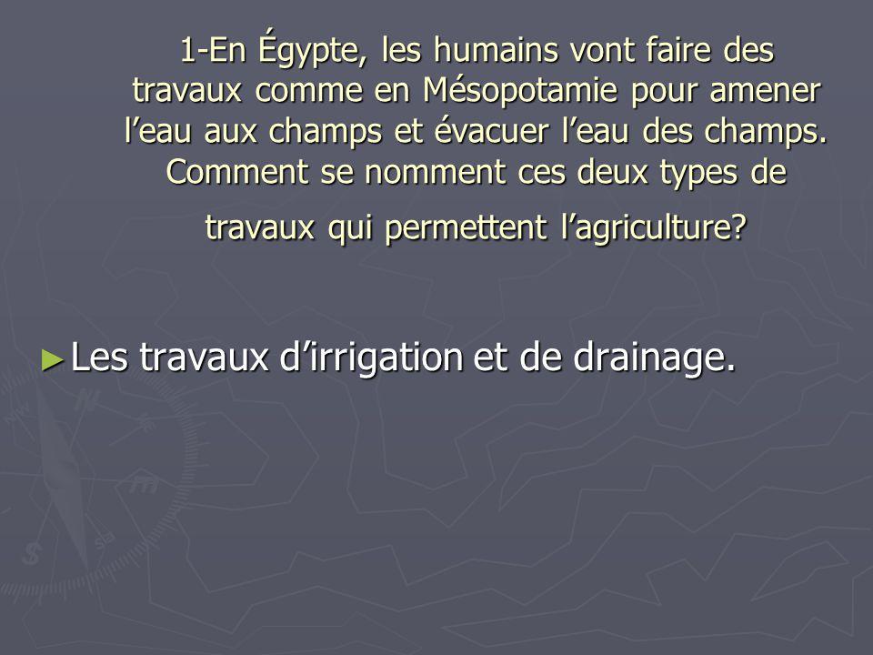 Les travaux d'irrigation et de drainage.