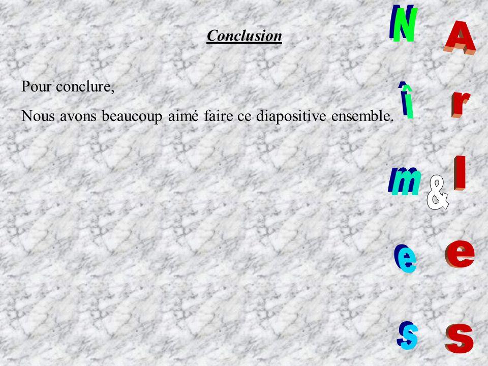 Arles Nîmes & Conclusion Pour conclure,