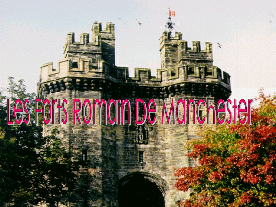 Les Forts Romain De Manchester