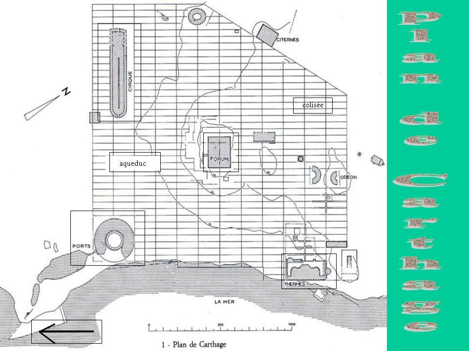 plan de Carthage colisée aqueduc