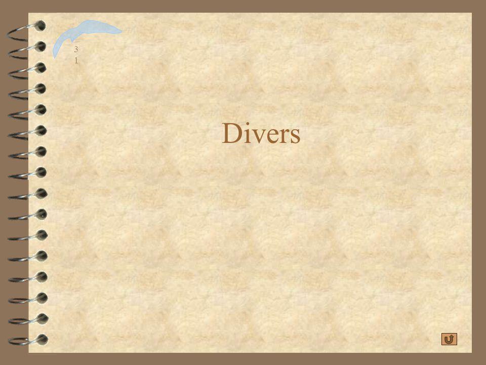 CabriWorld 2001 Divers