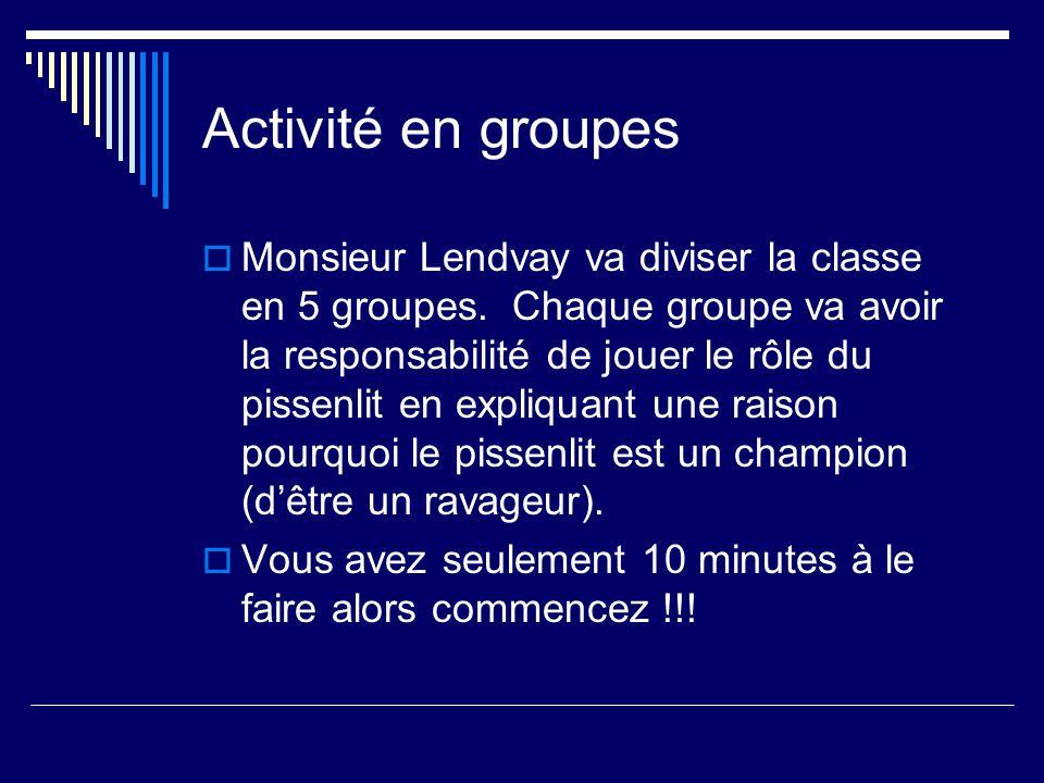 Activité en groupes