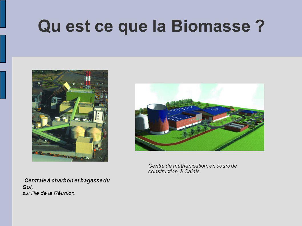 Qu est ce que la Biomasse