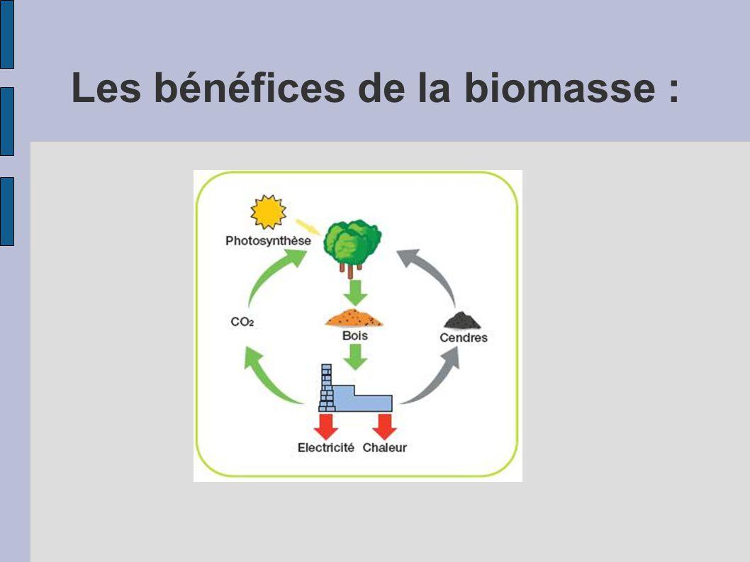 Les bénéfices de la biomasse :