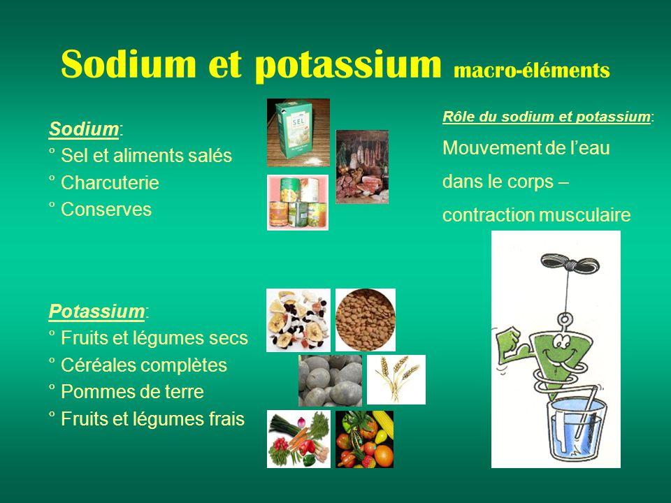 Sodium et potassium macro-éléments