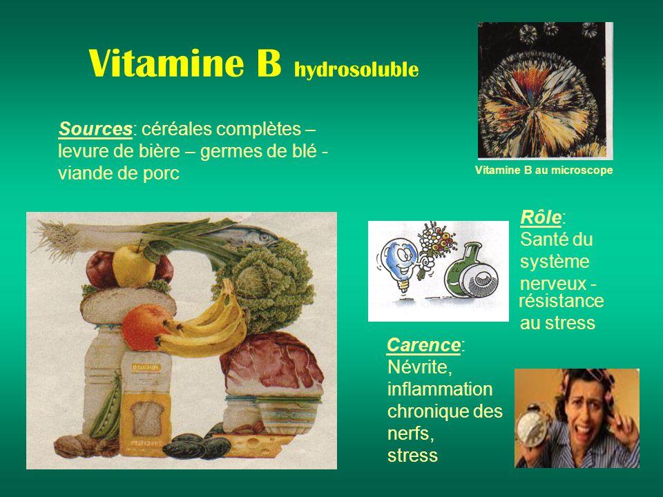 Vitamine B hydrosoluble