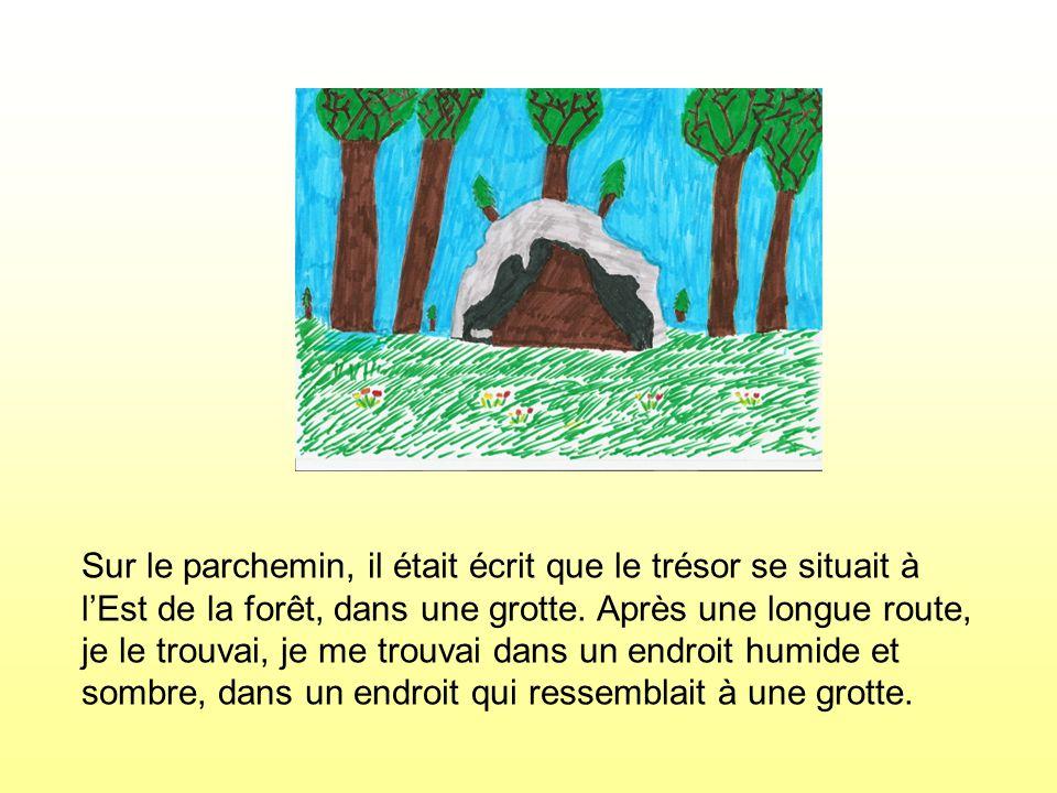 Sur le parchemin, il était écrit que le trésor se situait à l'Est de la forêt, dans une grotte.