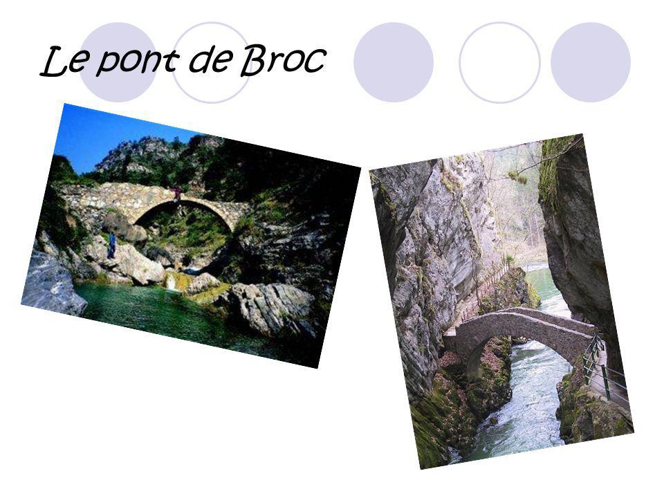 Le pont de Broc